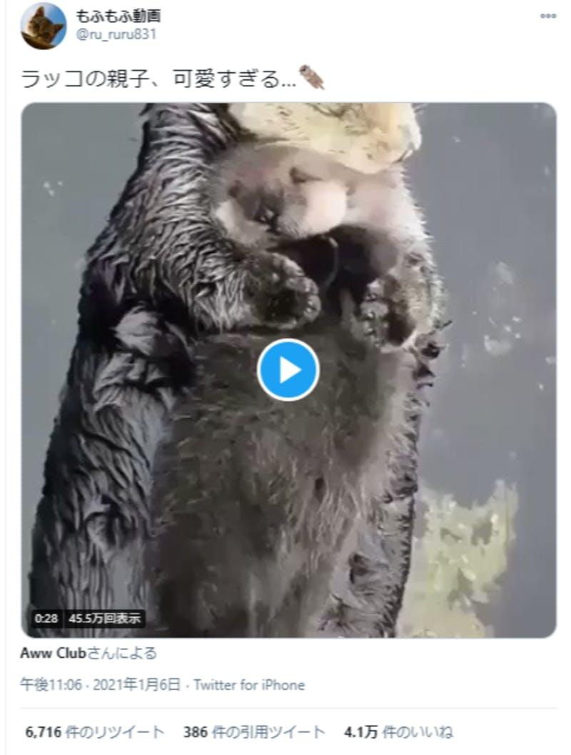 Twitterにアップされた動画
