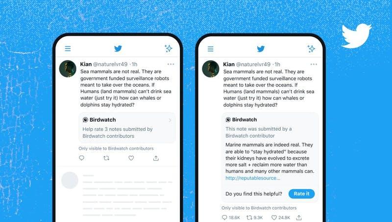 Birdwatchの注釈がツイートに表示される