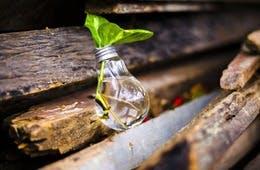 エシカル消費とは?「人・社会・地域・環境」に配慮する商品が売れる。企業にとってのメリットも解説
