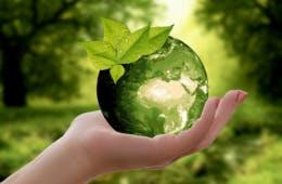 グリーンコンシューマリズム(緑の消費者運動)とは?環境負荷を重視・販促事例を紹介
